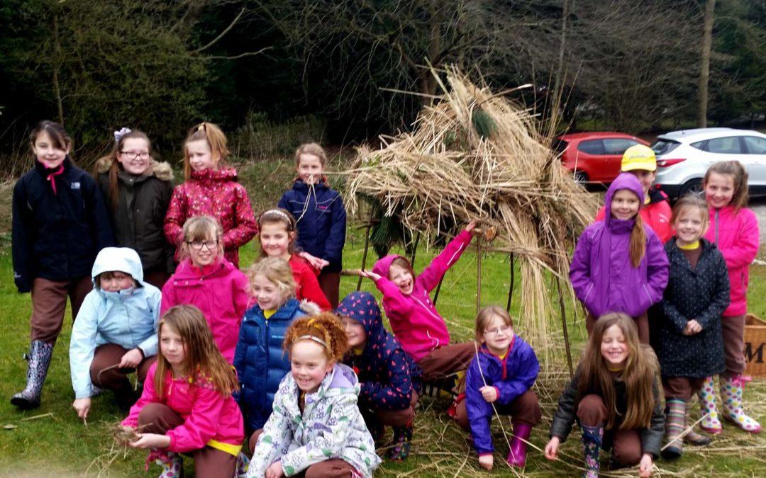 Rotherham Brownies build a Natural Shelter