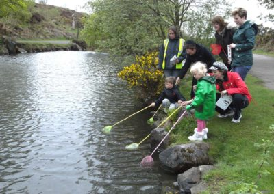 Pond Dippers | Friends of Ilkley Moor