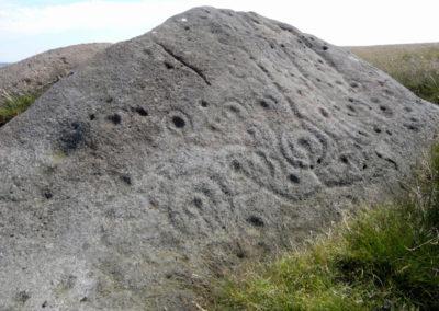 Archaeology-badger-stone-photographer-barry-wilkinson